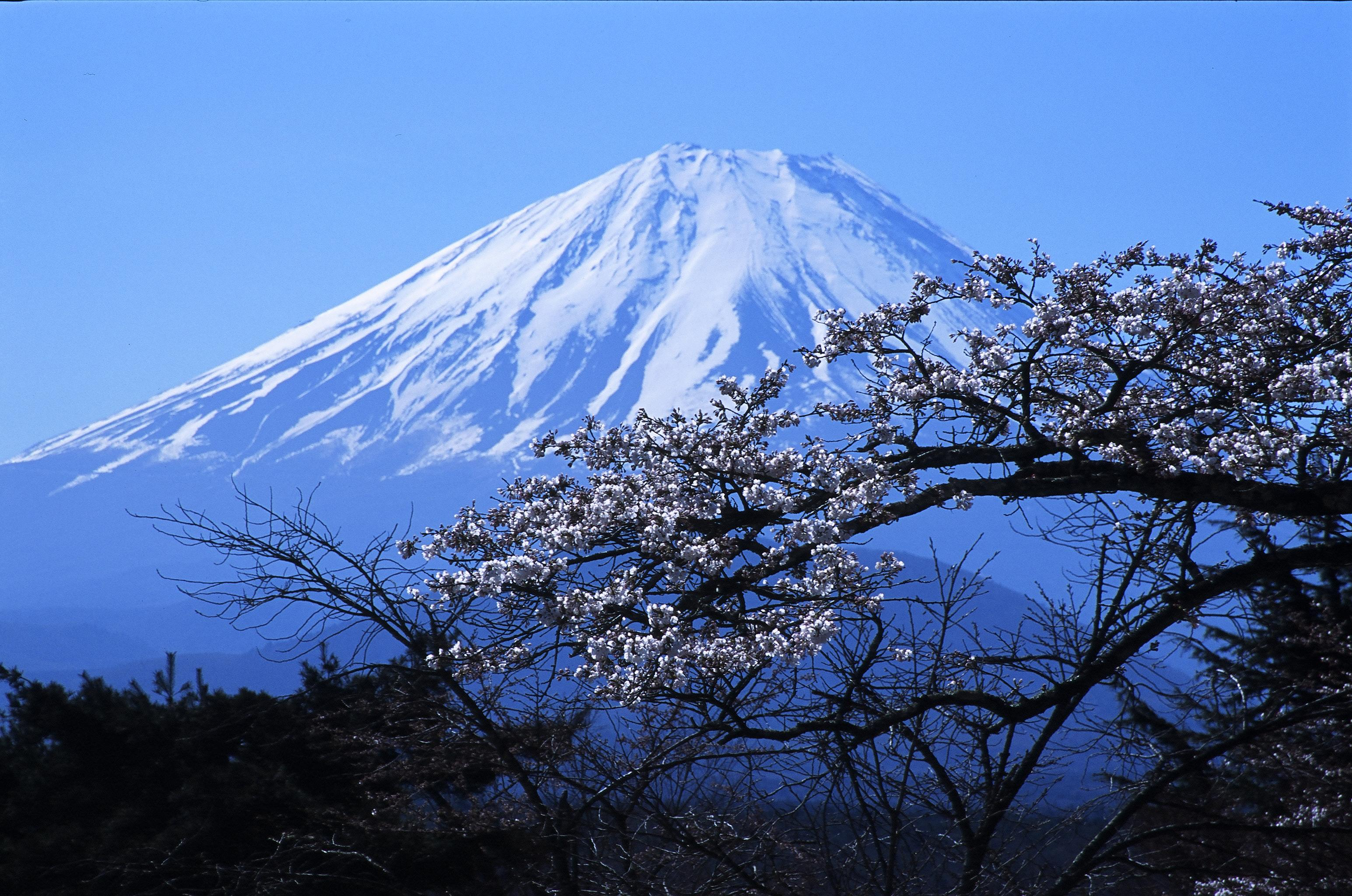 Fujiyama Mountain In Japan