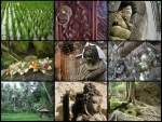 Bali in parts