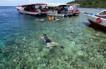 happy snorkeling in bunaken